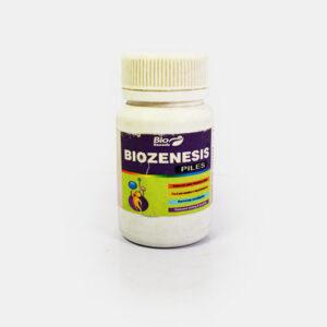 Biozenesis Piles